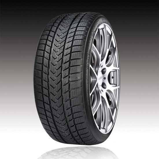 Gomme Nuove Gripmax 255/40 R19 100V Pro Winter BSW XL M+S pneumatici nuovi Invernale